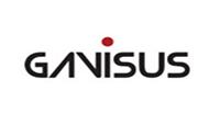 Gavisus