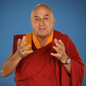 23 neue Videos über Altruismus in Unternehmen mit Matthieu Ricard