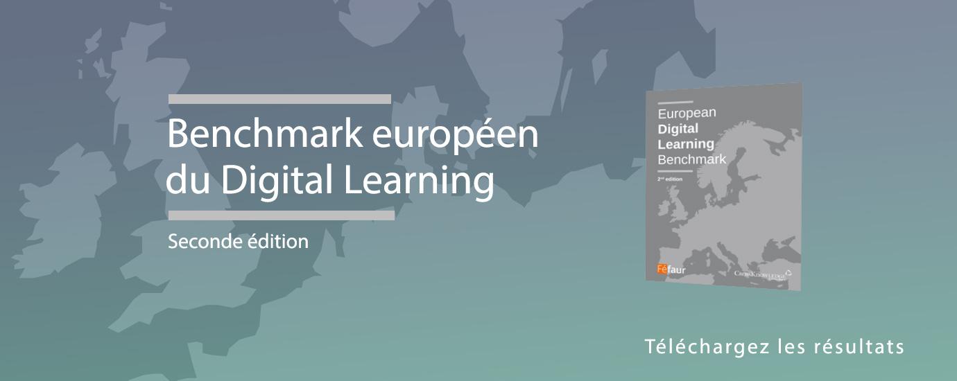 CrossKnowledge et Féfaur ont réalisé la 2ème édition du Benchmark Européen du Digital Learning, auprès des grandes entreprises européennes.